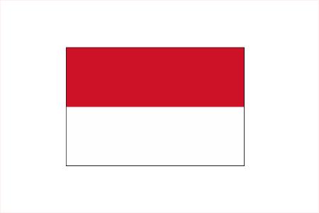 インドネシア国際研修プロジェクト
