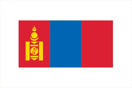 モンゴル国際研修プロジェクト
